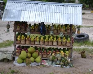 sur la route, les vendeurs de fruits